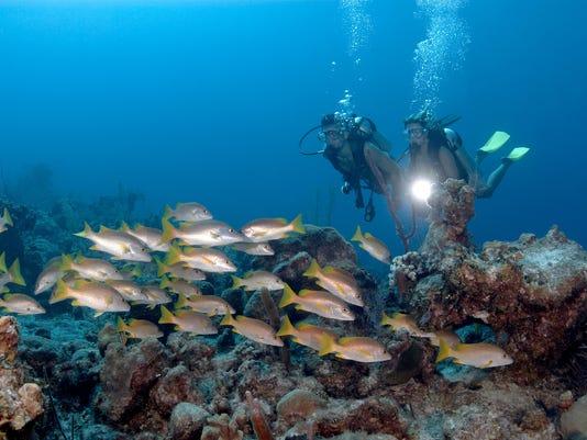 635712702951426685-2-diving-photo-courtesy-of-Amanyara
