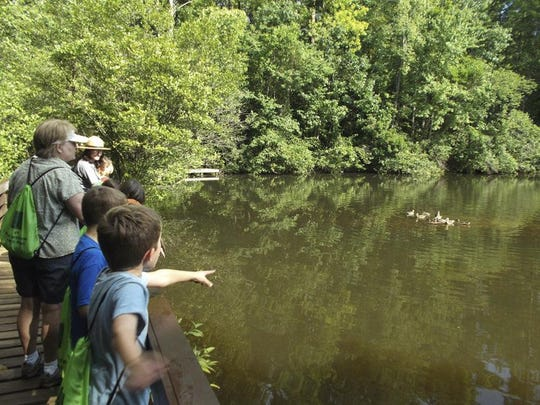 Families can enjoy the great outdoors during the Creek Ranger Hike at Paris Mountain State Park.