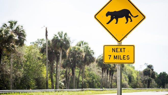 Florida panther sign near Immokalee, Florida.