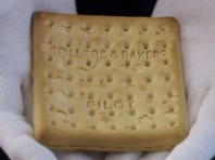 Biscuit that survived the Titanic sinking sold at auction for $23K