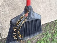 This Texas-sized centipede was spotted in Garner State Park in the Texas Hill Country.