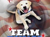 Bunce, America's Puppy