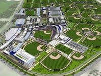 The Atlanta Braves, former leaguer Gary Sheffield and a developer are floating a sports proposal for the Toytown area.