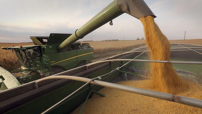 Several factors are coalescing to suggest that soybeans could prove to be a pivotal crop for many growers this year.