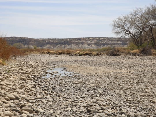 A trickle of water is seen in the bed of the Animas River April 27 along the Among the Waters river trail in Farmington. Drought conditions nearly dried up the Animas River over the summer, prompting Farmington and Aztec to issue water restrictions.