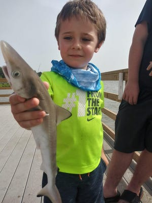 Jaxon Buchner, 5, went fishing with his father, Sean Buchner, and big brother Sean Buchner Jr., on July 1 at the Wilmington Island dock. Jaxon caught a baby shark and was so brave enough to hold it.