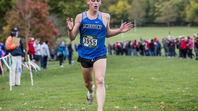Limestone's Wilson Georges, seen here at a meet earlier this month, won the Class 2A Metamora Regional boys title on Saturday.