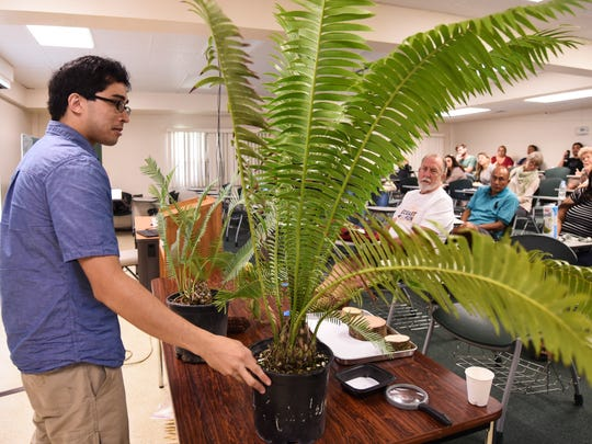 Botanist and cycad enthusiast, Ben Deloso, introduces one of the many species of cycad plants that could found on Guam, to participants during a workshop at the University of Guam in Mangilao on Saturday, Dec. 2, 2017. The event has held to raise awareness of the endangered fadang, or cycad plants, and its close relatives, both locally and around the world.