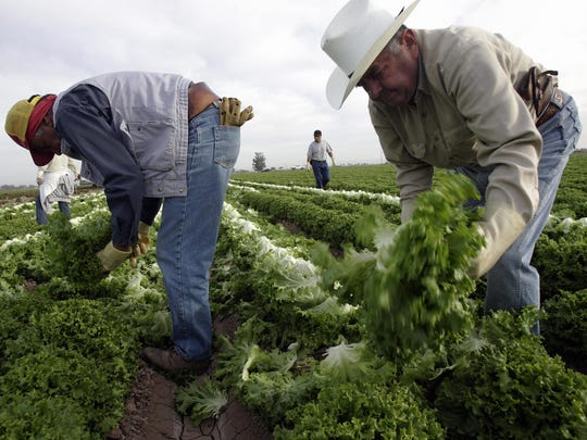 In March, analysts at BBVA bank predicted that migrant remittances to Mexico could fall as much as 21% because of stay-at-home orders and record unemployment in the U.S. Instead, remittances reached a record high in early 2020, the Bank of Mexico recently reported. Mexico received $4.02 billion in March 2020, a 35.8% increase over March 2019.