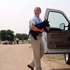 George W. Bush carries his dog Barney into his pickup truck before driving back to his ranch house after meeting the press in Crawford, Texas, on Aug. 13, 2003.
