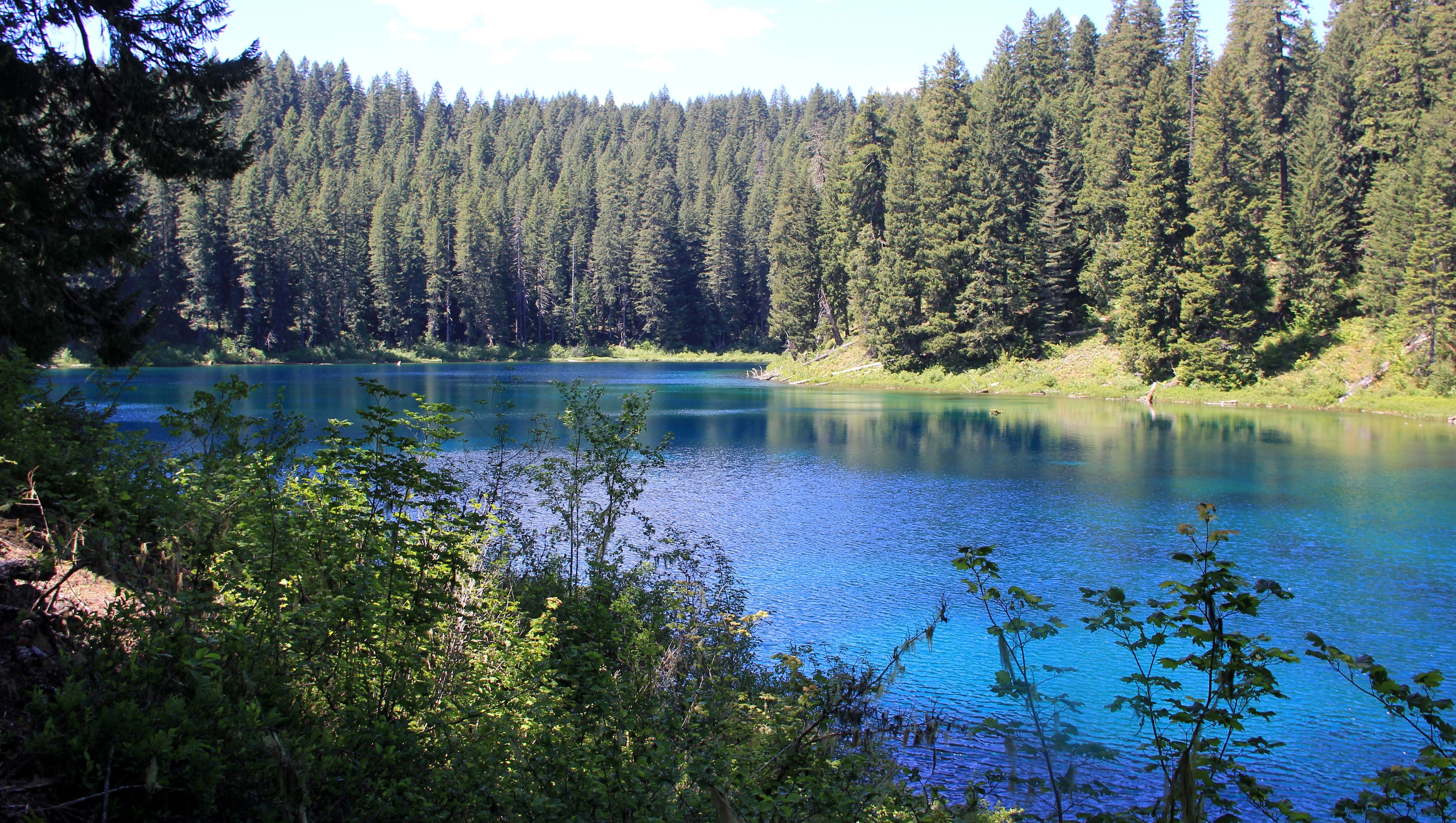 Head to Oregon's mountains lakes for excellent trout fishing