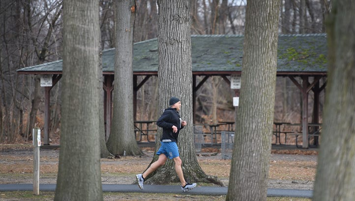 A man jogs through the trees in the Otto C. Pehle area