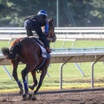 American Pharoah concludes Haskell preparations with gallop