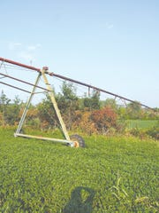 Fall is the best season for chemical brush control