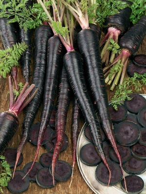 Black Nebula carrots hold their color even when they're cooked.