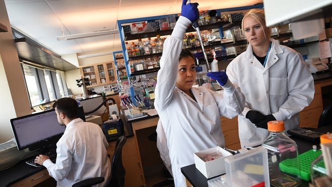 University of Nevada Medical School grad student Denise Reyes, middle, and undergrad student Heather Green work together in a lab at the Center for Molecular Medicine building in Reno on June 25, 2015.  Student Adam Kirosingh is seen on the left.
