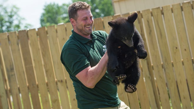 Animal Adventure owner Jordan Patch holds Cole, a 4-month-old black bear on opening day at the park on Saturday.