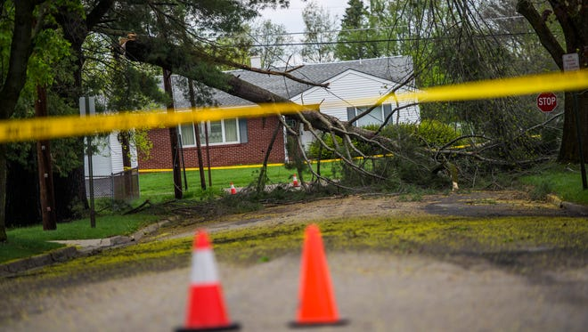 A fallen tree closed Pickwick Drive in Vestal on Tuesday.