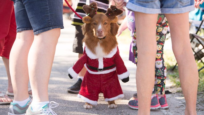 The 32nd annual Hobe Sound Christmas Parade along Bridge Road on Saturday, December 2, 2017 in Hobe Sound.