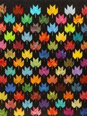 Marilyn Bujalski's raffle quilt.