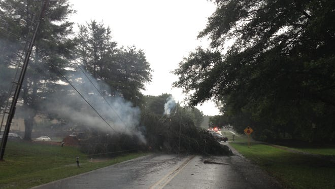 A storm caused a tree to fall on power lines Thursday.
