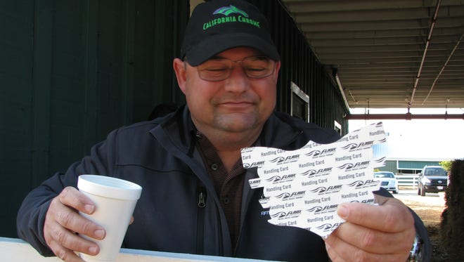 Assistant trainer Alan Sherman displays one of the nasal strips California Chrome has worn during his six-race winning streak. This view shows the strip from the rear, where there is adhesive backing.