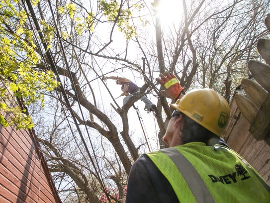 Apprentice Justin Sherman (left) waits for tree branches