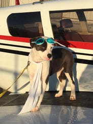 Ava poses on a plane during her journey from island