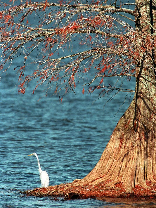 Cross Lake photo