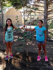 Sisters Brooklyn, 9, and Bailyn, 7, Lopez with the tree they planted at the Penny Park Orchard during the Red Hot Children's Fiesta
