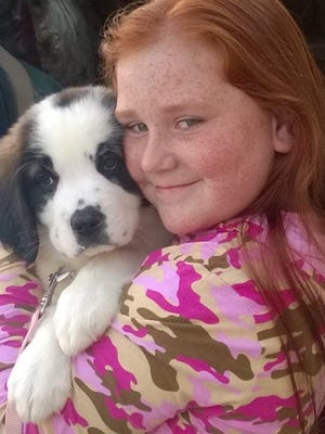 The Winning Kids Club of Lehigh Acres is training Kalli, a 9-week-old St. Bernard, as a comfort dog.