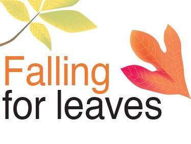 Here's a page chock-full of fall fun for kids and adults alike. Learn how to preserve leaves and much more!