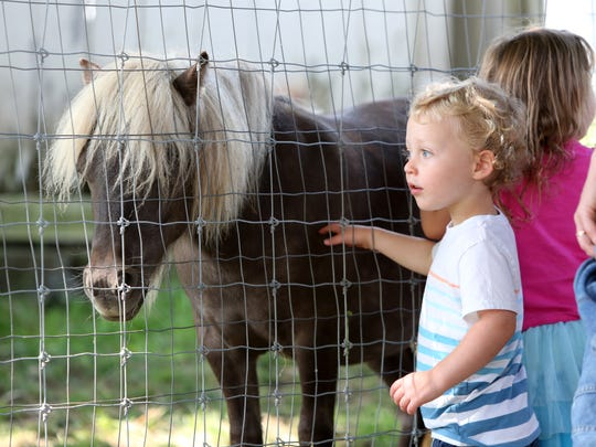 Reid Jacoby, 3, of Croton-on-Hudson pets a pony during a visit to Muscoot Farm with family and friends Aug. 27, 2017 in Katonah.