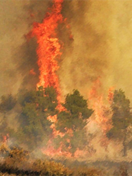 -FIRE2.jpg_20081216.jpg