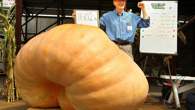 Steve Connolly, of Sharon celebrates as his 1,602 lb. giant pumpkin breaks a fair record on the second day of the Marshfield Fair in August 2018. This year's Marshfield Fair was canceled, the first time in fair history.