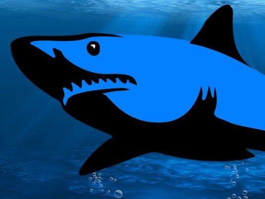 636414565798918575-Pensacola-Debt-Sharks-logo.jpg