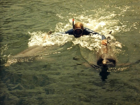 Fred Meserall loved to snorkel and scuba dive in his days on the Florida coast. Here he swims with a couple of dolphins.