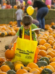 A child looks through the pumpkin patch at the 16th Annual Pumpkin Festival at Diamond Z Arena in Cedar City, Saturday, Oct. 15, 2016.