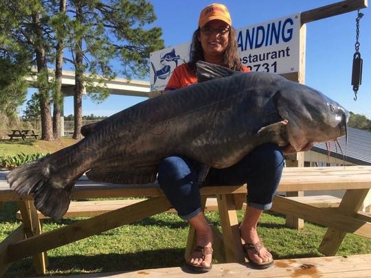 Paula Haney shows off her pending state-record blue catfish at Hill's Landing near Cross, S.C.