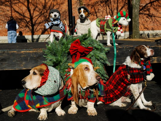 A wonderfully silly holiday tradition is the Mount