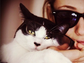 """""""Shameless"""" actress Emmy Rossum slapped a pair of frames on her kitty and shared the moment with her Instagram followers."""