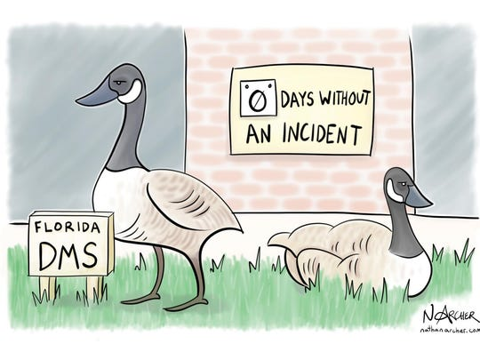 The first editorial cartoon Nathan Archer ever drew poked fun at the geese problems in SouthWood.