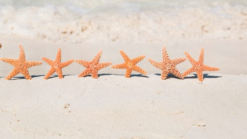 Subject: Starfish Santa and a row of starfish reindeers across the sandy beach of the Caribbean beach.