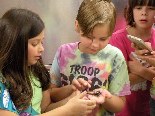 Two members of Girl Scouts Troop 61061 hold a Madagascar hissing cockroach during a visit to the New Mexico State University Arthropod Museum.