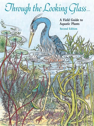 Through the Looking Glass ... A Field Guide to Aquatic Plants