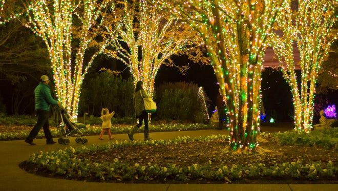 Cheekwood Holiday Lights in 2015.