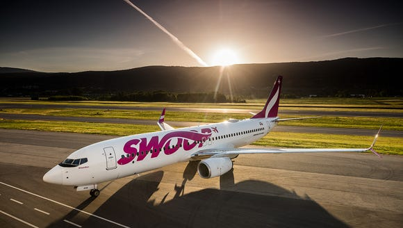 A look at one of Swoop's  Boeing 737-800s.