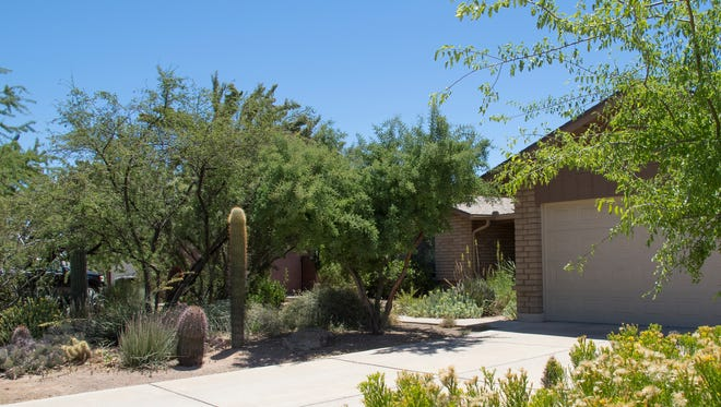 """When Scott McMahon first saw his house, he hated the landscaping, which featured palm trees, oleander, and a backyard lawn—all of which he ripped out. """"I guess I'm a nonconformist,"""" he said, """"but my neighbors don't complain."""""""