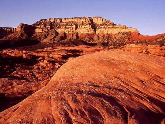 North Rim, Grand Canyon ofrece un paisaje hermoso.