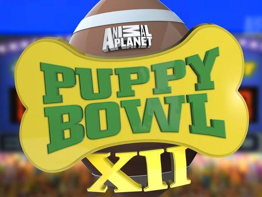 635902254262845324-Puppy-Bowl-Title.jpg